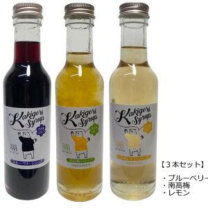 【3種セット】 無添加 かき氷シロップ 〈ブルーベリー/南高梅/レモン〉 各250g 信州自然王国
