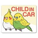 【車ステッカー】インコ 鳥【CHILD IN CAR】チャイルドインカー 車マグネットステッカー ゆうパケット対応210円〜