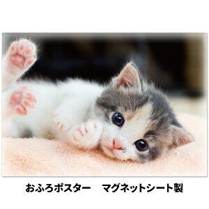 おふろポスター【子猫】マグネットシート製【宅配便限定】【有料ギフトラッピング対応可】