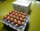 定期購入まごころ卵 60個入り M〜Lサイズ (割れ保証15個含む)