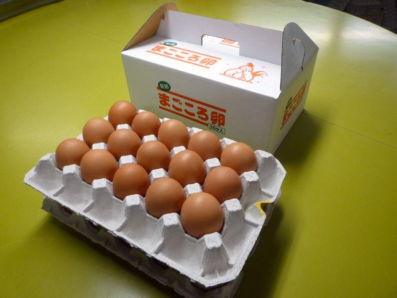 定期購入まごころ卵 30個入り (割れ保証8個含む)M〜Lサイズ