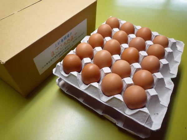 定期購入まごころ卵 40個入り (割れ保証10個含む)M〜Lサイズ