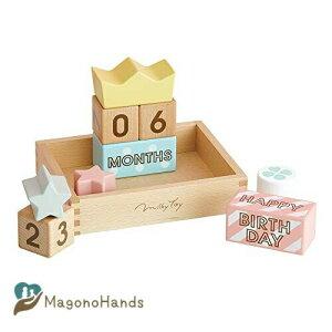 エドインター Memory Biscuits メモリービスケット 1歳 おもちゃ ブロック Ed. Inter 出産祝い プレゼント ギフト 誕生日 記念日 月齢 フォト 男の子 女の子