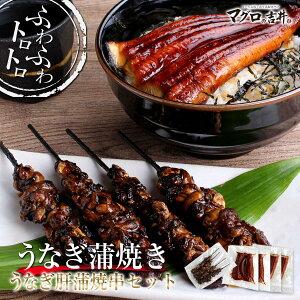 お歳暮 ギフト ウナギ 蒲焼とウナギ肝蒲焼串 セット 【送料無料】 gd259