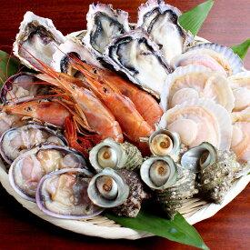 海鮮 バーベキュー セット 家キャン 赤海老 殻付き 牡蠣 帆立 大アサリ サザエ 貝類 2〜3人前 BBQ