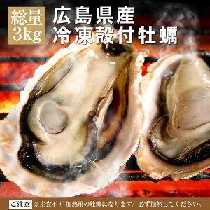 送料無料 殻付き 冷凍 牡蠣 広島県産 特大LLサイズ 3kg 約20〜23個入 4〜5人前 キャンプ 海鮮 バーベキュー BBQ カンカン焼き 追加用として人気 カンカンは付いてません gd139