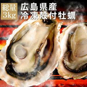 送料無料 殻付き 冷凍 牡蠣 広島県産 3kg 約26個前後入 4〜5人前 キャンプ 海鮮 バーベキュー BBQ カンカン焼き 追加用として人気 カンカンは付いてません gd139