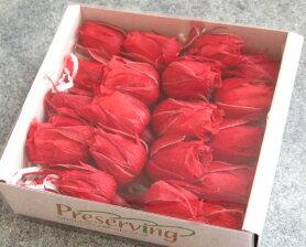 【花材】プリザーブドフラワー 大地農園ローズ スージー1箱20輪入り レッド
