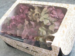 【花材】あじさい プリザーブドフラワー TOKA東北花材ソフトアジサイ彩1箱 ボルドー×グリーン