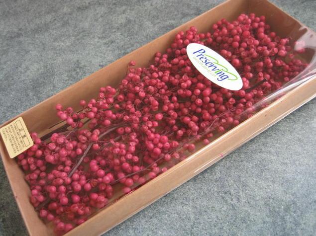 【花材】防虫加工・プリザーブドフラワー 大地農園ペッパーベリープリザーブド1束 ピンク