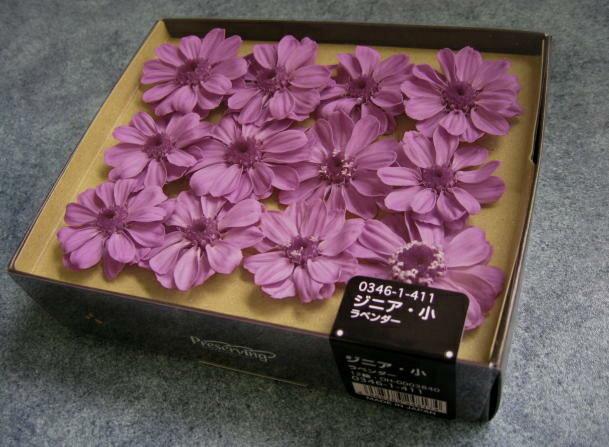 【花材】プリザーブドフラワー 大地農園ジニア・小1箱12輪入り