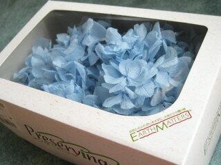 【花材】プリザーブドフラワー 大地農園ソフトゆめアジサイヘッド1箱 ブルー