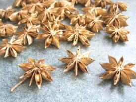 【花材】ドライ 大地農園スターアニス1袋約17個入り ゴールド