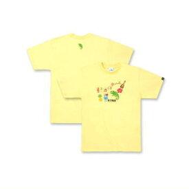エバーグリーン【B-TRUE】ベーシックTシャツ タイプ1