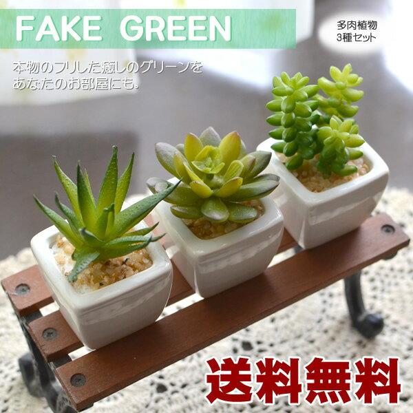 【送料無料】フェイグリーン 多肉植物 3個セット フェイクグリーン  ちょっとしたアクセントにフェイクグリーン ミニ 観葉植物 造花 インテリア フェイクグリーン フェイクグリーン フェイクグリーン【10】