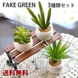 【送料無料】観葉植物Mサイズ オーバル 3個セット 多肉植物 フェイクグリーン 観葉植物 造花 インテリア フェイクグリーン フェイクグリーン フェイクグリーン