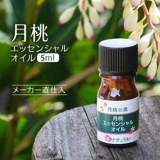 像真地驚人的美容精華月桃子精油5ml(精油)藥草那樣的香味成分對健康的美人有活力地引導!