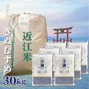 【送料無料】 【新米】 米 滋賀県産 きぬむすめ 30Kg お米 令和二年産 玄米 白米 ごはん 一等米 単一原料米 保存食 米 真空パック 高級