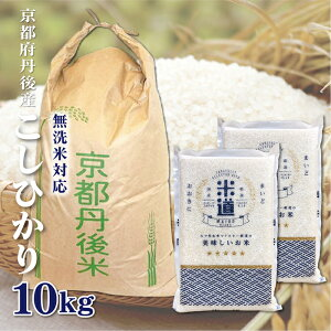 米 10kg 送料無料 白米 無洗米 こしひかり 5kg×2 新米 令和二年産 京都府丹後産 10キロ お米 玄米 ごはん単一原料米 保存食 米 真空パック 保存米