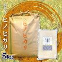 福岡県産 ヒノヒカリ 無洗米 5Kg お米 送料無料 令和元年産 玄米 白米 ごはん 慣行栽培米 検査米 単一原料米 分付き米…