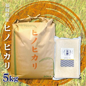 米 5kg 送料無料 白米 無洗米 ヒノヒカリ 新米 令和二年産 福岡県産 5キロ お米 玄米 ごはん 慣行栽培米 検査米 単一原料米 分付き米対応可 保存食 米 真空パック 長期保存 高級 保存米