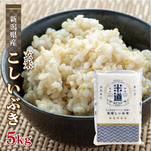 玄米 5kg 送料無料 白米 こしいぶき 新米 令和二年産 新潟県産 5キロ お米 玄米 ごはん 慣行栽培米 一等米 単一原料米 分付き米対応可 保存食 米 真空パック 高級
