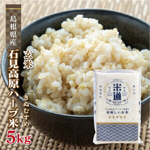 玄米 5kg 送料無料 白米 きぬむすめ 石見高原ハーブ米 新米 令和二年産 島根県産 5キロ お米 玄米 ごはん 特別栽培米 一等米 単一原料米 分付き米対応可 保存食 米 真空パック 高級