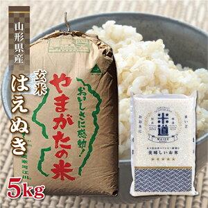 玄米 5kg 送料無料 白米 無洗米 はえぬき 新米 令和二年産 山形県産 5キロ お米 検査米 単一原料米 保存食 無洗米 玄米 真空パック