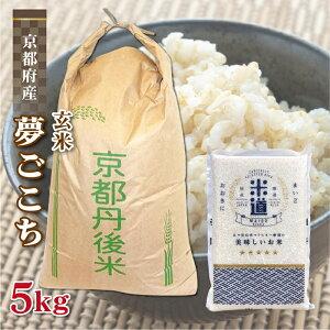 玄米 5kg 送料無料 白米 無洗米 夢ごこち 新米 令和二年産 京都府丹後産 5キロ お米 玄米 ごはん 無洗米 一等米 単一原料米 保存食 米 真空パック