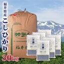 米 30kg 送料無料 白米 無洗米 こしひかり 5kg×6 新米 令和二年産 福井県産 こしひかり 30キロ お米 玄米 ごはん 無洗米 一等米 単一原料米 保存食 真空パック 高級 保存米