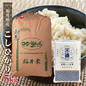 玄米 5kg 送料無料 白米 無洗米 こしひかり 新米 令和二年産 福井県産 5キロ お米 玄米 ごはん単一原料米 保存食 米 真空パック 保存米
