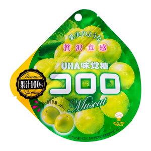 【UHA味覚糖】 コロロ マスカット 48g×6個セット