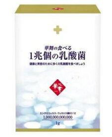 華舞の食べる1兆個の乳酸菌(1.0g×30本入)【5個以上お買い上げで送料無料(沖縄・北海道は送料760円となります)】