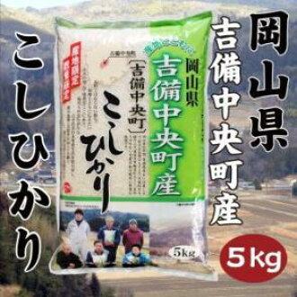 5 kg of Koshihikari from Kibi-Chuo-cho, Okayama