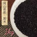 【岡山県産】毎度体にうれしい黒米じゃ!!1kg【黒米 1kg 送料無料 国産】