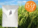 減農薬・有機肥料で育てた美味しいお米【奥越後岩船産コシヒカリ 愛情米 5分搗き米 10kg(5kg×2袋)】<あす楽・即日発送>