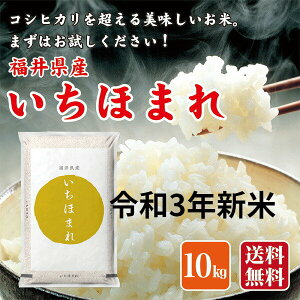 令和3年産 新米 お米 米 10kg 福井県産 いちほまれ 福井県米