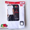 FRUIT OF THE LOOM【フルーツ オブ ザ ルーム】3P TEE 半袖 Tシャツ 3枚入り メンズ(男性用)