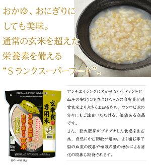 【送料無料】※北海道・沖縄・離島を除く宮城県産玄米「金のいぶき」5kg5キロ5kg国産国内産日本産きんのいぶきげんまい栄養胚芽袋