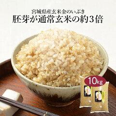【送料無料】※北海道・沖縄・離島を除く宮城県産玄米「金のいぶき」10kg10キロ10kg国産国内産日本産きんのいぶきげんまい栄養胚芽袋