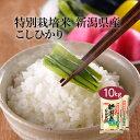【送料無料】【特別栽培米】【令和2年産】新潟県産 JA北越後指定 特別栽培米 こしひかり 10kg (5kg×2袋) <白米>お米 単一原料米 おくさま印 送料込み ※沖縄・離島除く