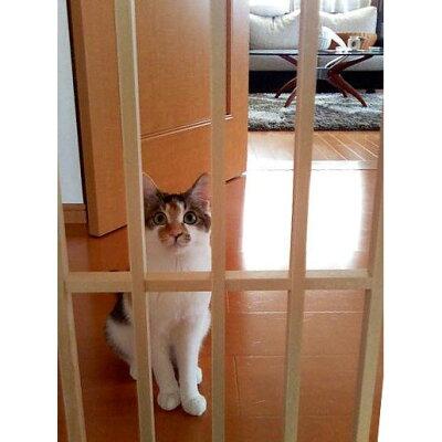 猫ちゃんの柵にも2