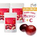 カムカム サプリメント(60カプセル)3袋セット ビタミンC+ビタミンE 妊活サプリ 無添加 カムカム粉末 天然 サプリ V…