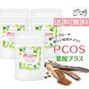PCOS 葉酸 プラス サプリメント 3袋セット (約3ヶ月分) カイロイノシトール配合 ピニトール 糖質 ビタミンE ビタミンC…