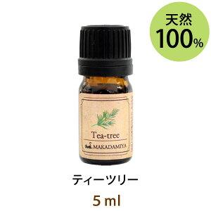 ネコポス送料無料 ティーツリー5ml(天然100%アロマオイル)シャープで鋭く若葉を想像させるフレッシュさに満ち溢れた香り(エッセンシャルオイル 精油★ Tea-tree)