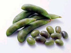 冷凍えだまめ ノースイ)黒豆の枝豆 塩味 500g