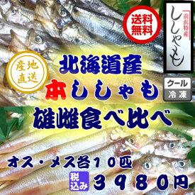 送料無料 本ししゃも 雄雌食べ比べセット北海道産 珍味 希少 豪華 ごちそう お正月 ※離島・一部の地域は追加料金がかかります。