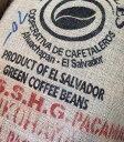 【モルティブ下北沢】\今月のお勧めコーヒー!/繊細な味わいのパカマラ種!エルサルバドル パカマラエル・パカマラ…