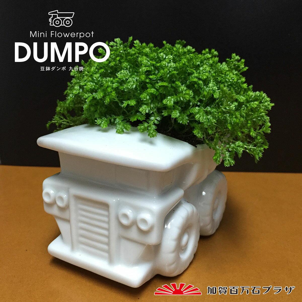 豆鉢ダンポ ダンプカー型ミニフラワーポット【九谷焼】/インテリアにも/父の日ギフト