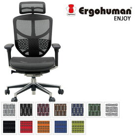 【ポイント10倍】 エルゴヒューマン Ergohuman デスクチェア オフィスチェア ハイバック エルゴヒューマン エンジョイ ハイタイプ ENJOY-H EJ-HAM (メッシュ) / EJ-HBM (モールドクッション座面)